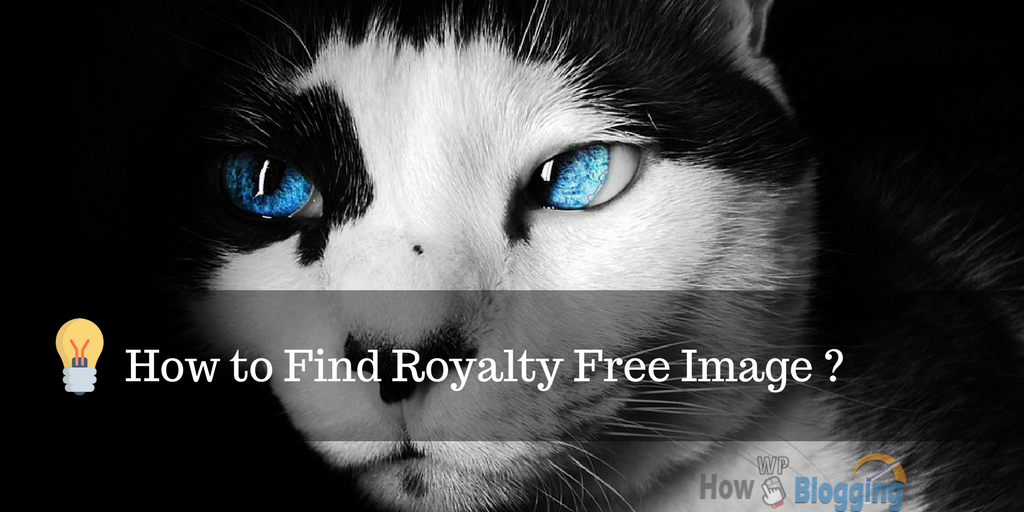 How to Find Royalty Free Image: Top 35+ Sites for Unique Image